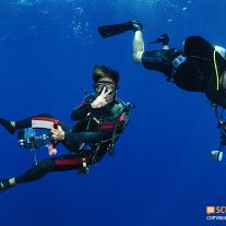 Underwater Photographers
