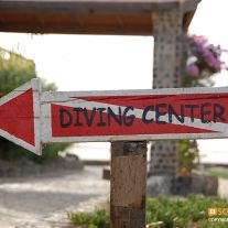 Diveshop Sign