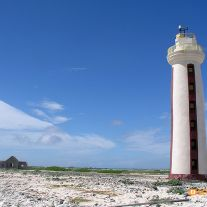 Willemstoren Lighthouse