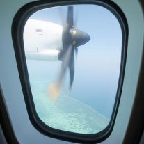 Plane Window Reef