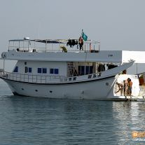 Dream Island Liveaboard
