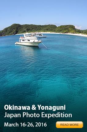 Okinawa Photo Expedition 2016