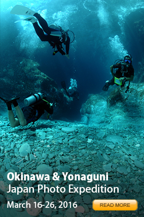 Okinawa Photo Expedition 2016