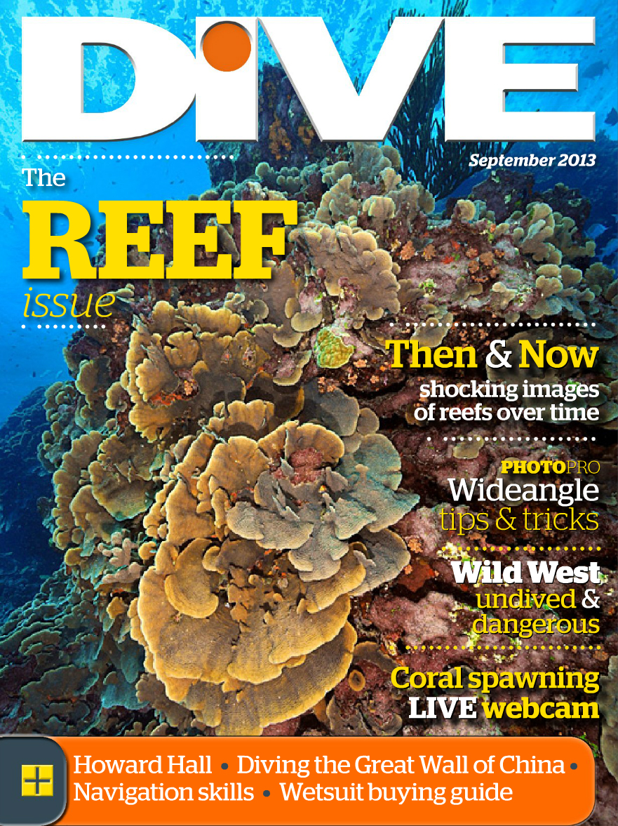 on-the-cover-of-dive-magazine