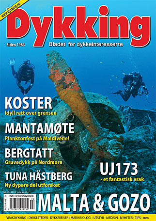 on-the-cover-of-dykking-2-2011