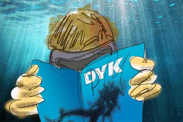 no-more-dyk-and-dive-the-world