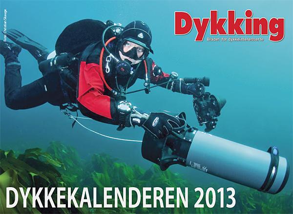 Dykking 2013 Calendar