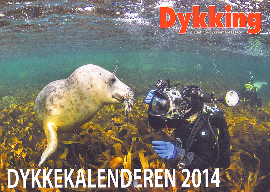 featured-in-the-2014-dykking-calendar