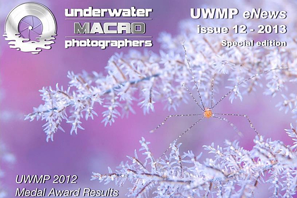 judging-uwmp-2012-awards