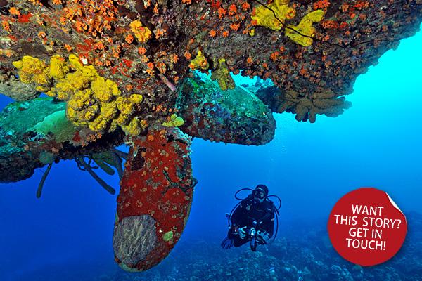 story-bonaire-divers-paradise