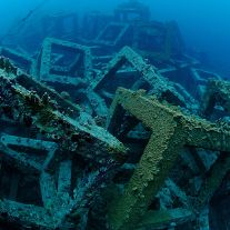 Artificial Reef and Diver